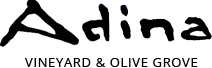 adina-logo.png